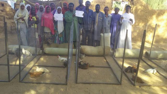 Iferouane chicken project